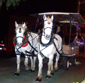 Ocala Christmas Parade 2011 154
